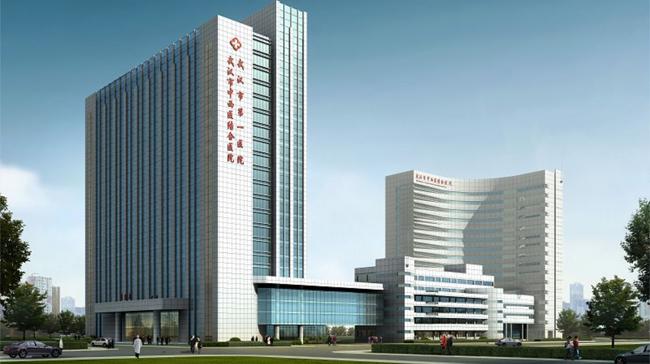湖北武汉市第一医院